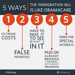 Obamacare_Immigration_v1-250x250 (1)